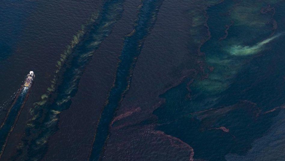 Umweltdesaster im Golf von Mexiko: USA wollen Ölsteuer vervierfachen