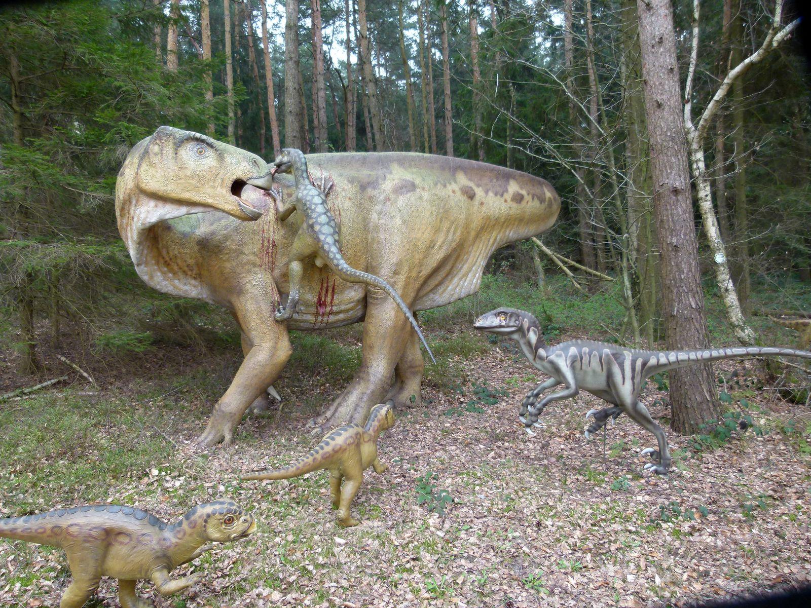 EINMALIGE VERWENDUNG Dinopark Münchehagen
