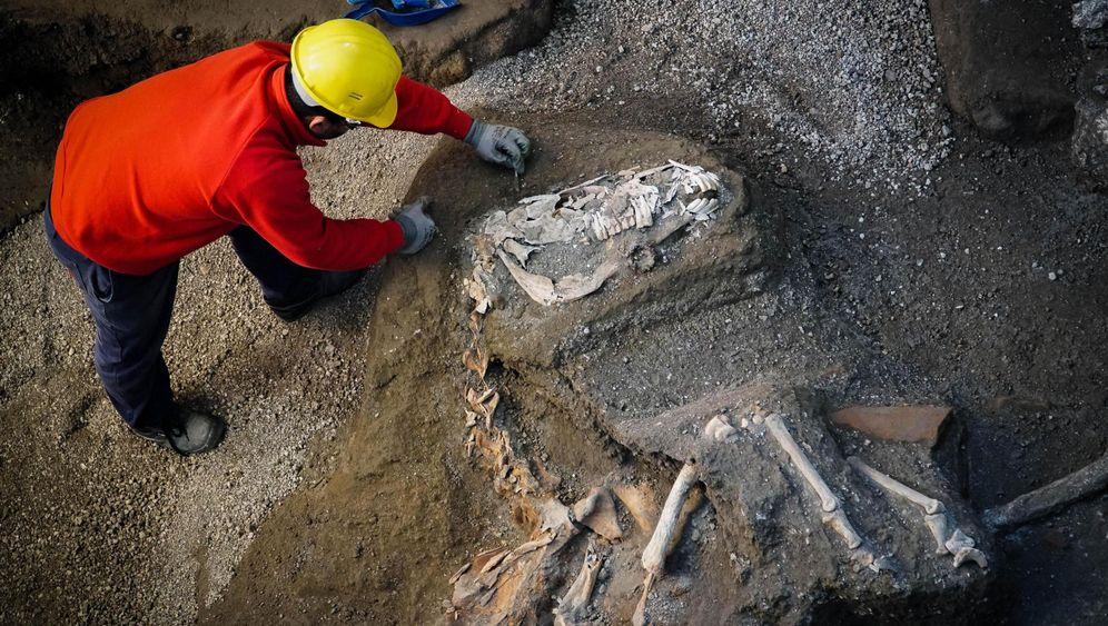 Pferd in Pompeji: Unter Asche begraben