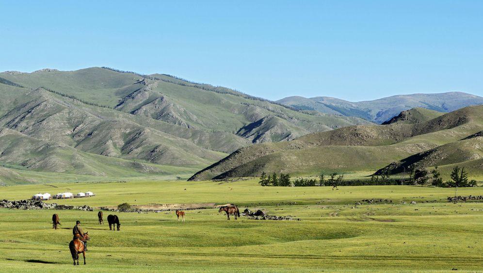 So weit, so schön, so still: Im Bus durch die mongolische Steppe