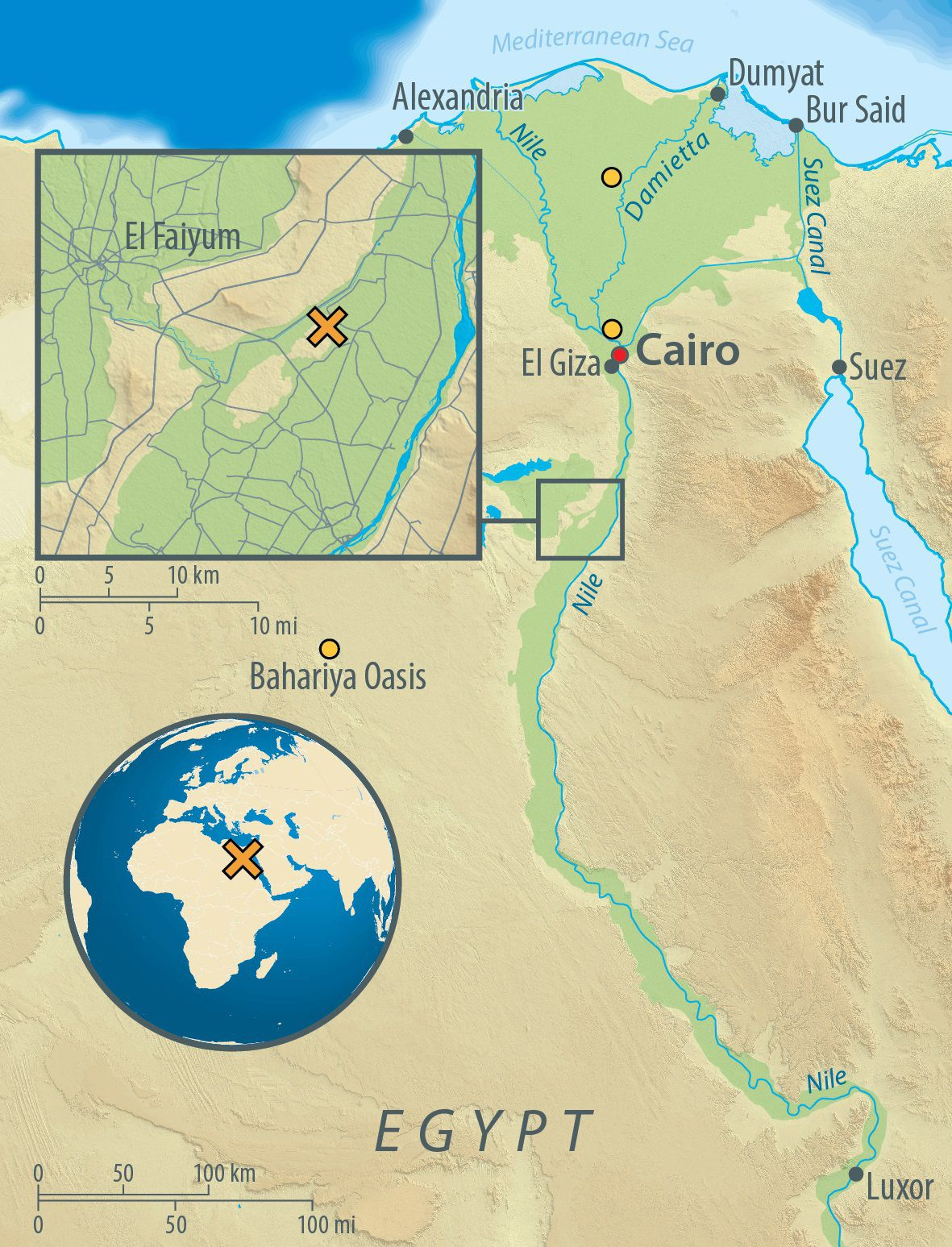 SPERRFRIST 30. Mai 2017 17:00 Uhr EINMALIGE VERWENDUNG Mumien-Genome / Ãgypten