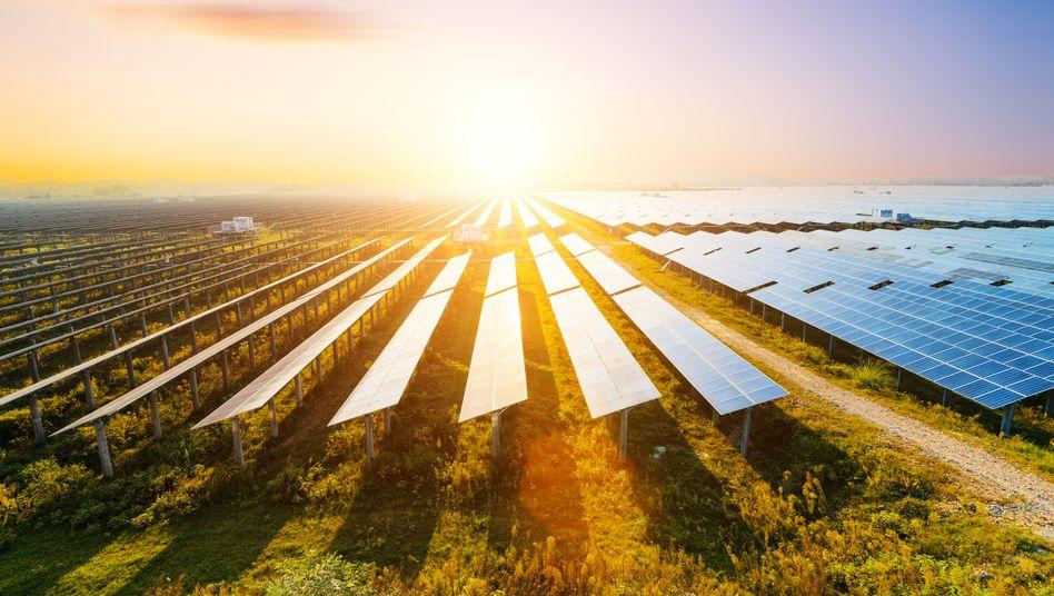 Photovoltaikmodule (Symbolbild)