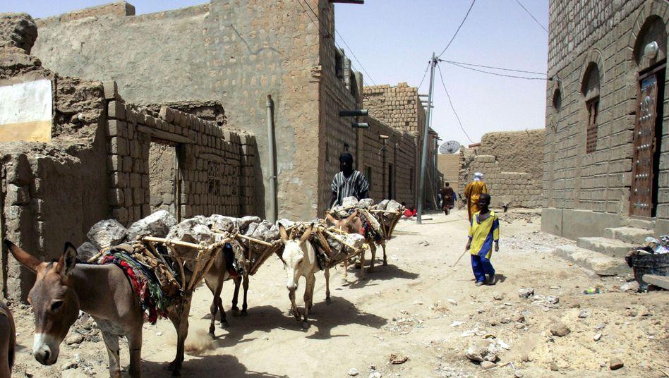 Esel transportieren Steinbrocken in Timbuktu: Das Auswärtige Amt warnt vor Anschlägen