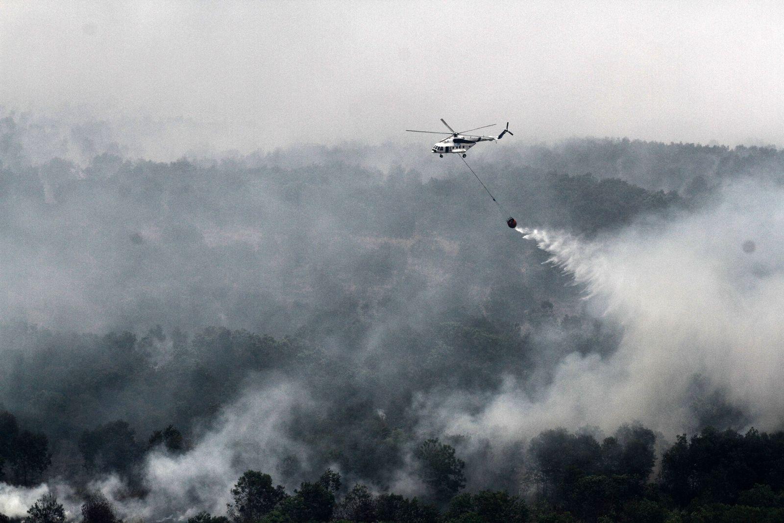 Indonesien/ Waldbrand